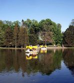 Die Gondoletta auf dem Kutzerweier im Luisenpark....