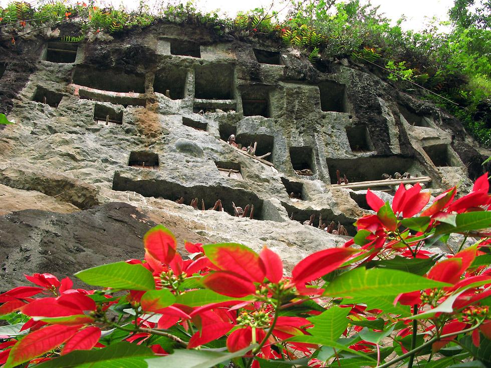 Die Gräber der Toraja im harten Lava- Gestein