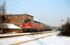 Die große Rote im Schnee