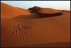 die große Sandkiste