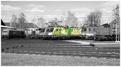 """""""Die Grüne Bahn"""""""