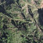 die grüne Seite der Insel