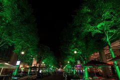 die grüne Straße am Potsdamer Platz