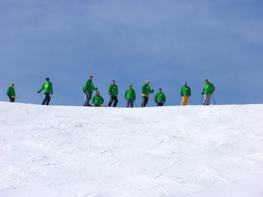 Die grünen im Weißen