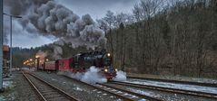 Die Harzer Schmalspurbahn ( HSB )
