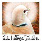 Die heilige Taube