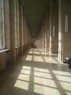 Die heiligen Hallen der Kunst