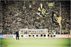 Die Helden des BVB...