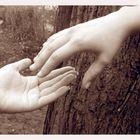 Die Helfende Hand!