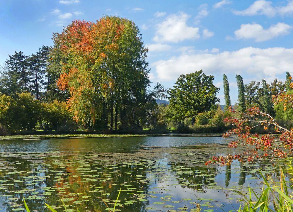 Die Herbstfarben kommen langsam
