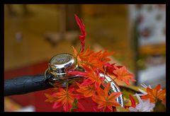Die Herbstklingel