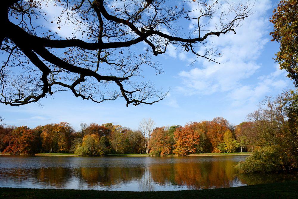 die Herbstsonne...