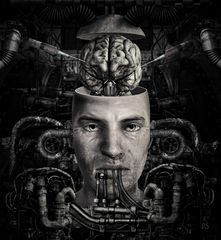 Die Hirntransplantation