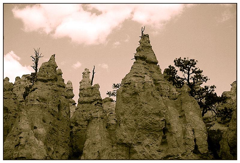 Die Hoodoos im Bryce Canyon - Utah, USA