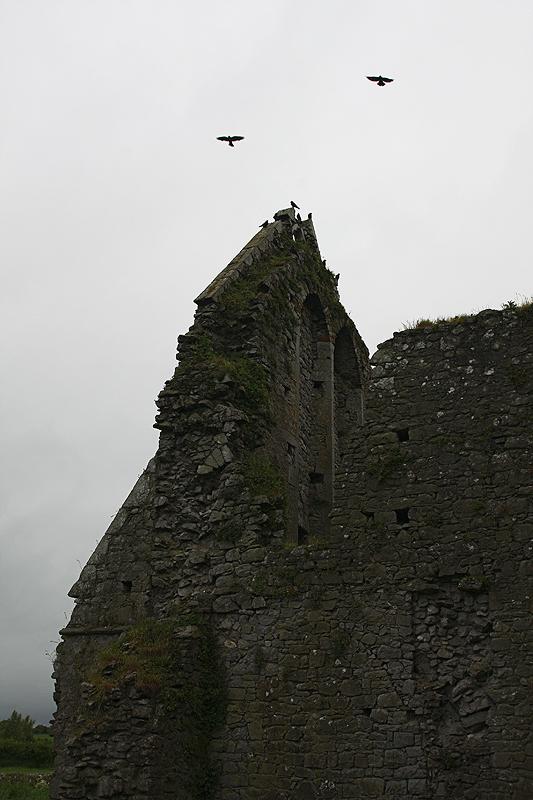 Die Hore Abbey....VII...