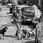 Die Hundebändigerin