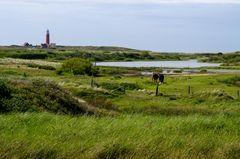 Die Idylle von Texel