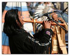 Die Indianer.....