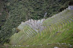 Die Inkastätte Winaywayna liegt auf 2740 m Höhe