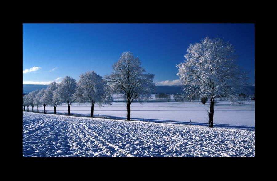 Die Kälte des Winters...
