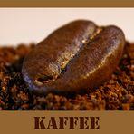 Die Kaffeebohne