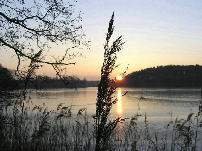 Die kalte Winterabendsonne im Visier