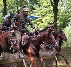 Die Kavallerie greift an.