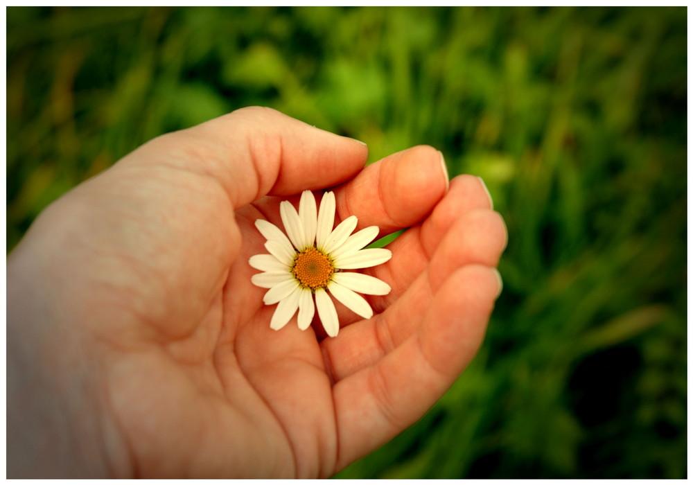*die kleine dinge im leben wertschätzen können*