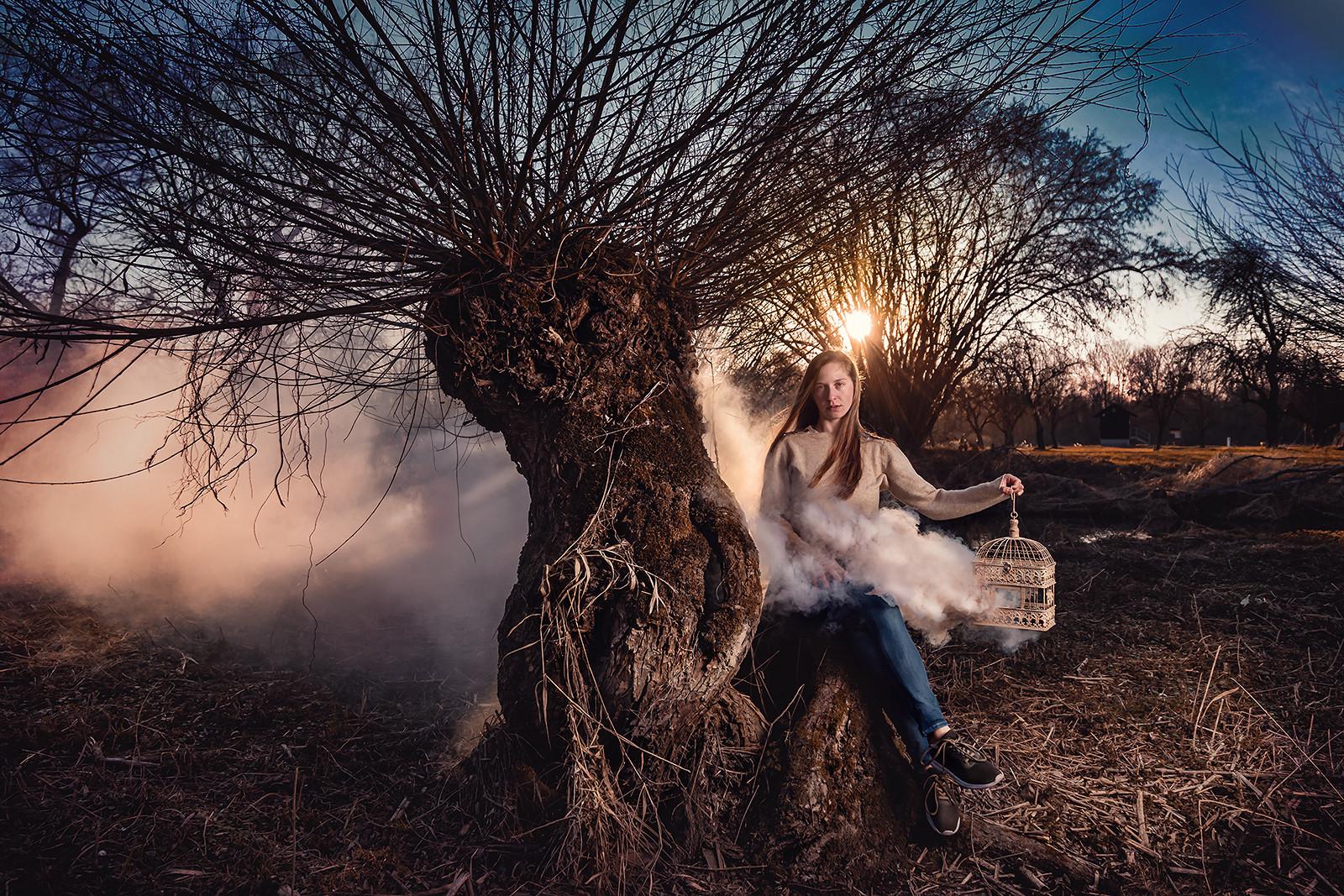 Die Königin der Weiden lässt den Frühling los ...