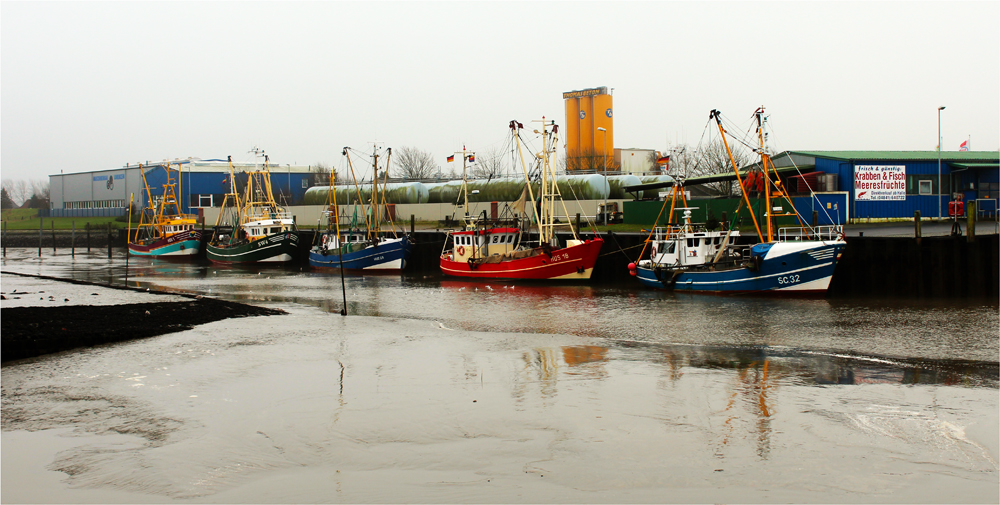 ... die Krabbenkutterflotte