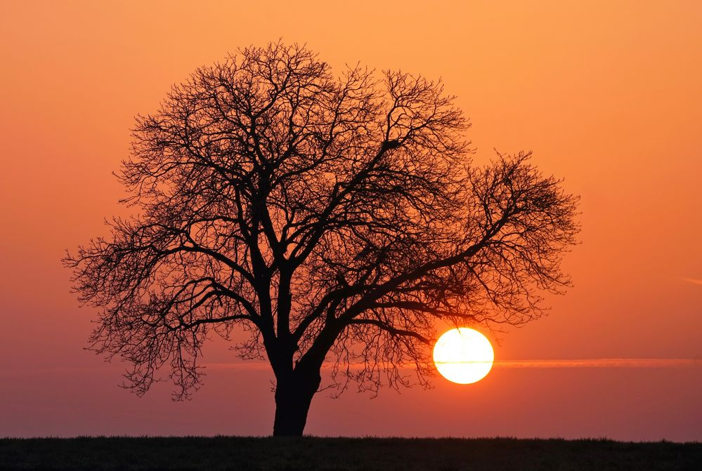 Die Kraft der Sonne