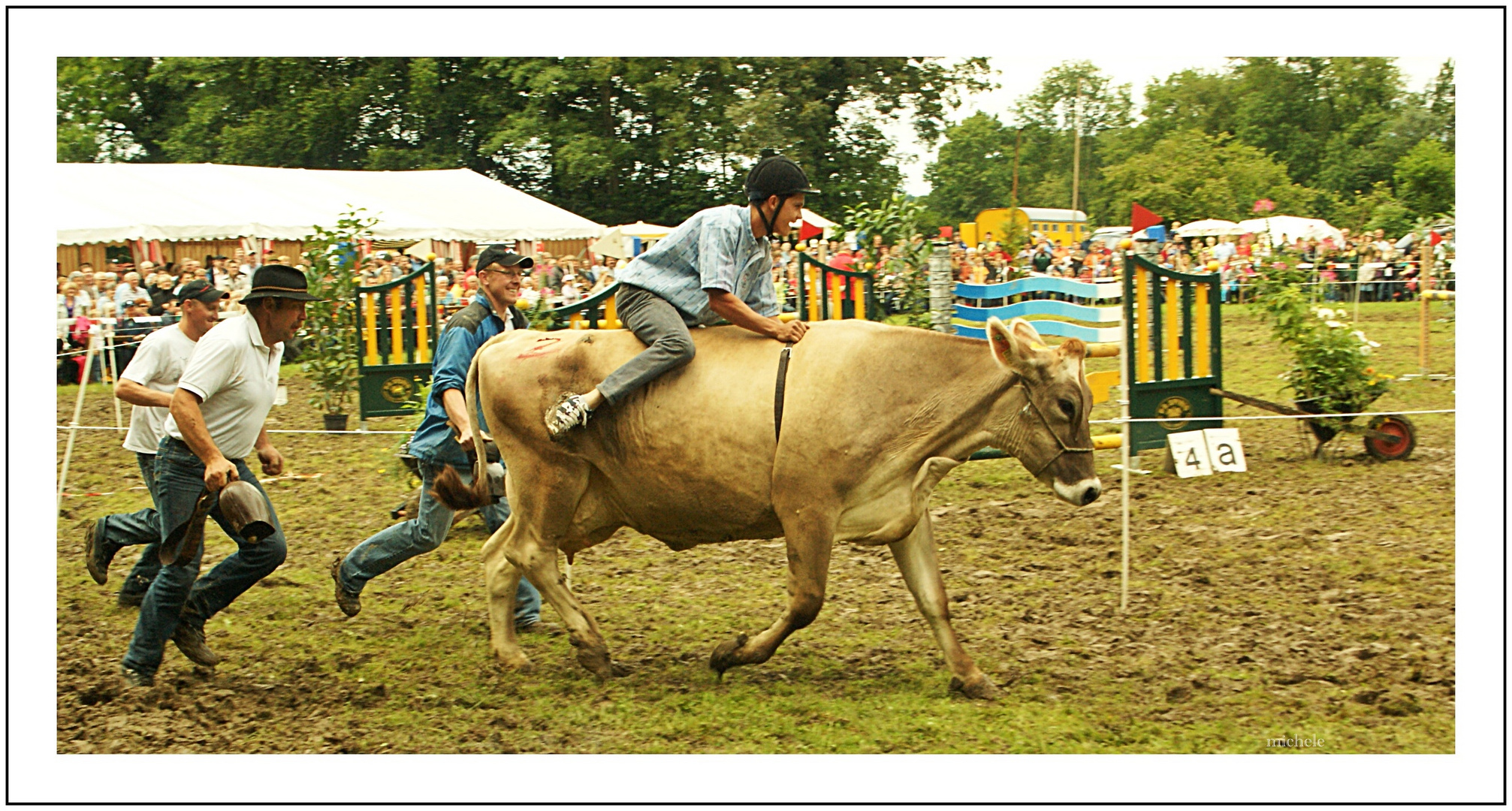 Die Kuh, der Reiter und die Treiber