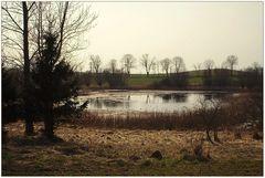 Die Landschaft der Uckermark