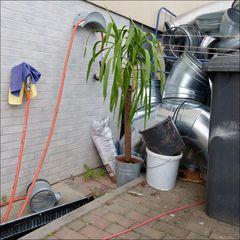 die Lappen, der Schlauch, die Palme und dicke Rohre in verdächtiger Nähe zu einer Mülltonne