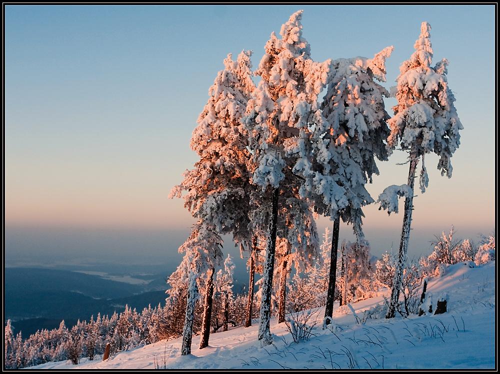 Die Last des Schnees