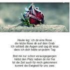 Die letzte Rose - 1