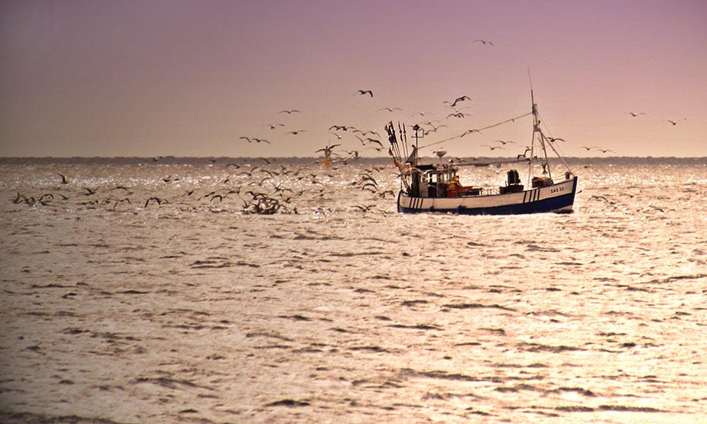 Die letzten Fischer von Rügen?