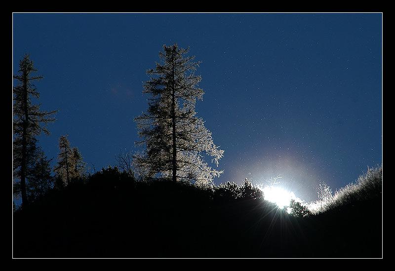 die letzten Herbstsonnenstrahlen
