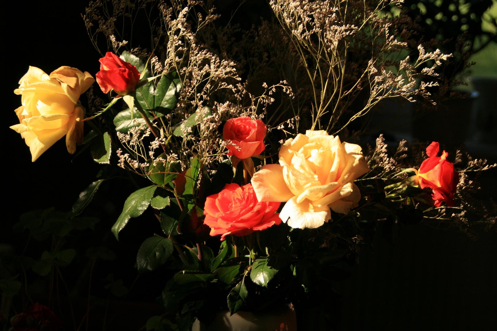Die letzten Rosen des Jahres