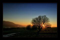 ~Die letzten Sonnenstrahlen ...