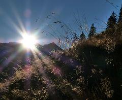 ...die letzten Sonnenstrahlen