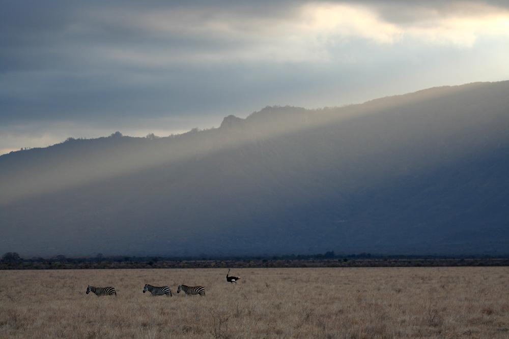 Die letzten Sonnenstrahlen über Tsavo