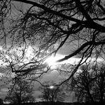 die letzten Strahlen der Sonne am Ende des Nachmitages