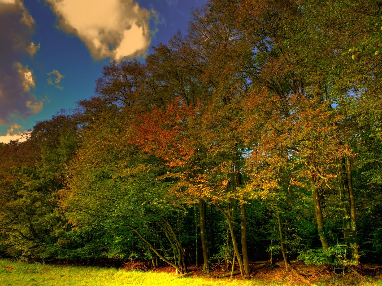 Die letzten Tage im Herbst