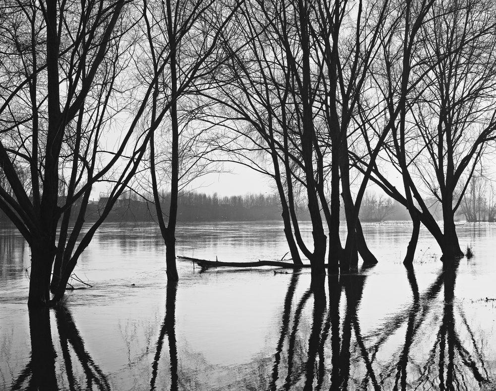 Die Loire im Winter
