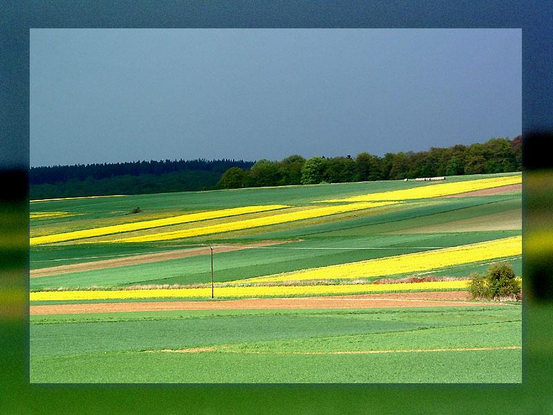 ... die Luft ist blau und grün das Feld ...