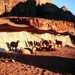 Die Magie der Wüste
