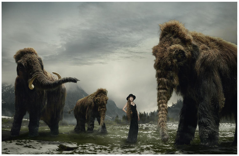 Die Mammuts kommen