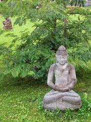 Die Meditation .........