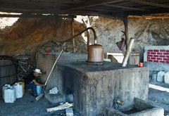 Die Mezcal Destillerie